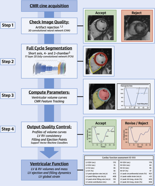 Fully automated, quality-controlled estimation of cardiac functional biomarkers